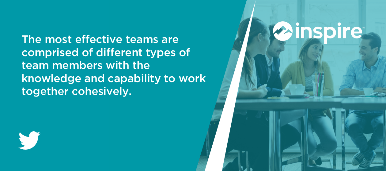 The most effective teams are comprised of different types of team members with the knowledge and capability to work together cohesively.